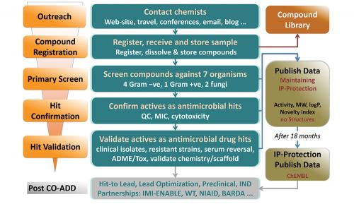 Workflow of CO-ADD antimicrobial screening.